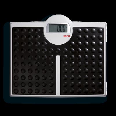 Seca 813 High Capacity Digital Flat Scale